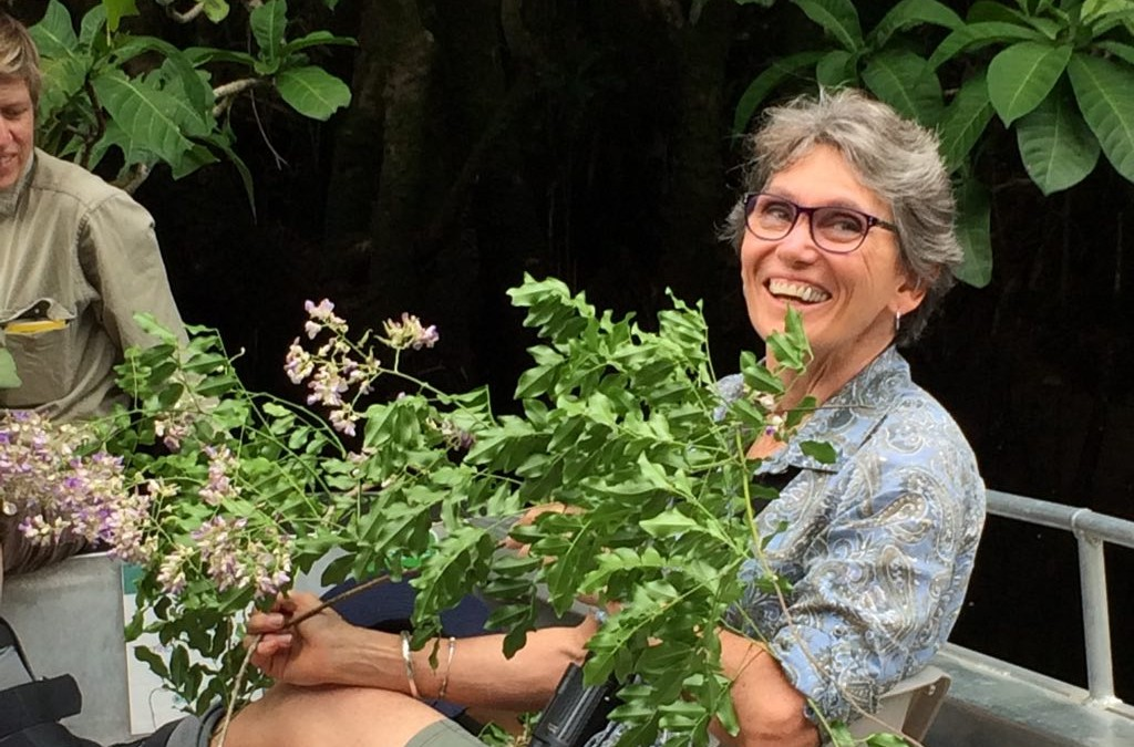 Collection and taxonomic description of a 'new' plant with botanist Wendy Cooper