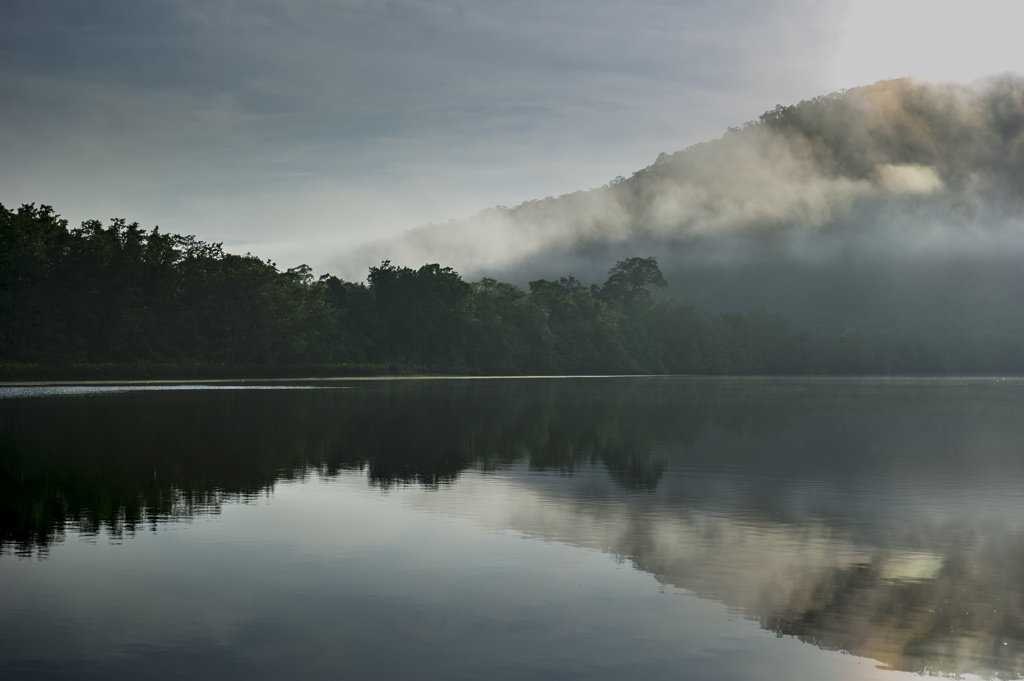 Early Morning Splendour (Photo: Steve Parish)